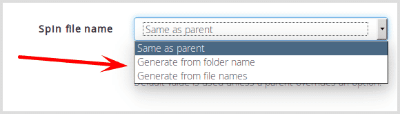 Spin file name options